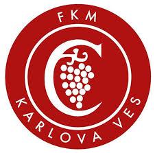 Futbalový klub<br/>mládeže<br/>Karlova Ves